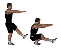 what is a pistol squat