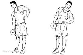 dumbbell side bends