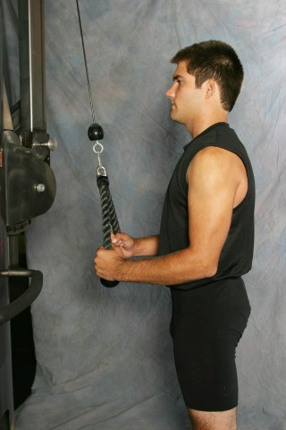 triceps extension rope, triceps and legs workout, evolution book, gym paws, workout gloves