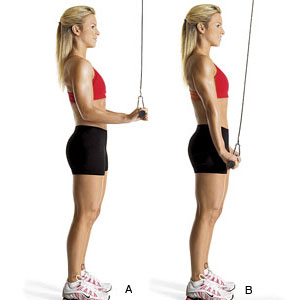 Are Resistance Bands Good For Building Lean Muscle Women