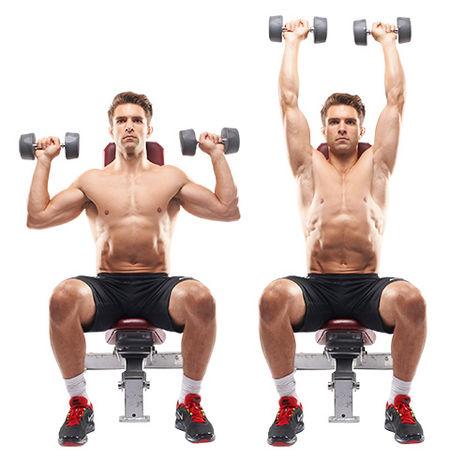 Seated Shoulder Press Workout