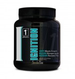 1st Phorm Ignition Review