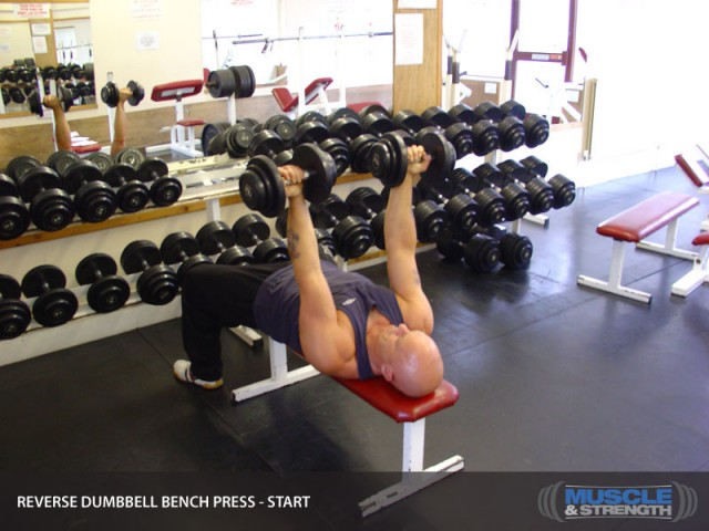 Reverse Grip Dumbbell Chest Press