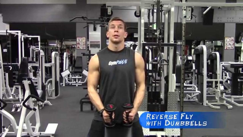 Reverse Flys With Dumbbells