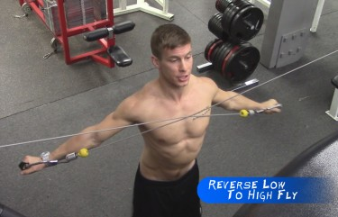 rotator cuff exercise Archives | GymPaws The Gym Glove