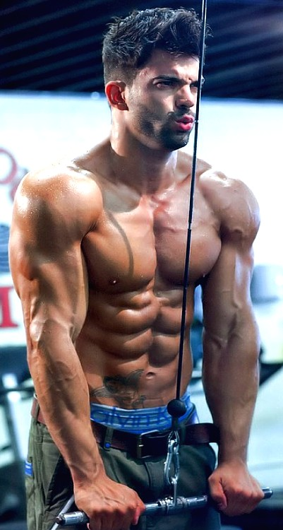 Best Triceps Exercises Ever