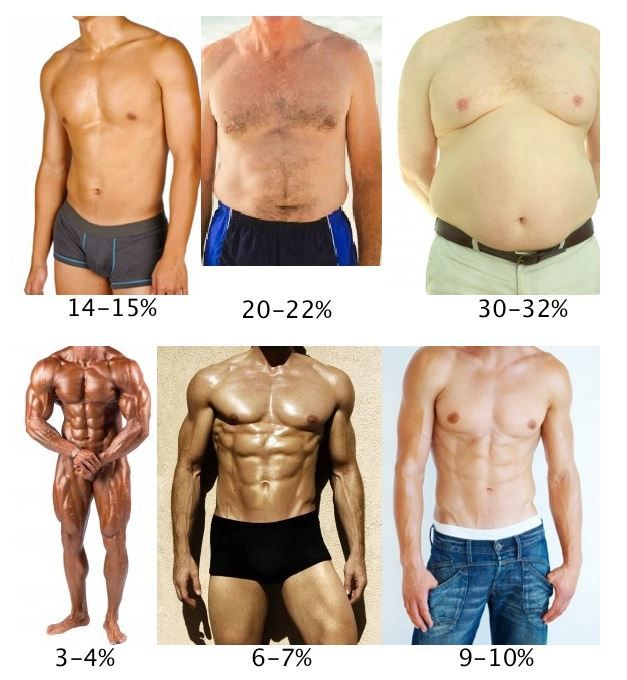 Body Fat Percentage and Weightlifting